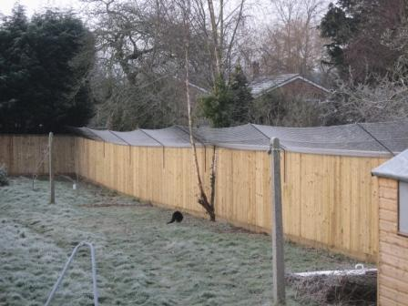 Photos of secur a cat garden cat proof fencing